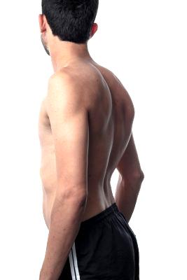 Osteoporosi Schiena